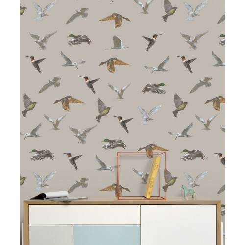Birds on grey